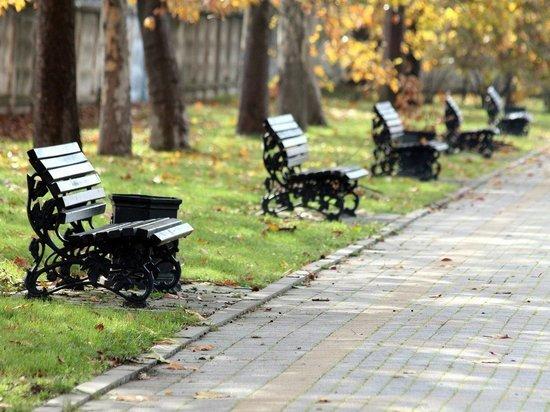 МинЖКХ будет искать деньги на благоустройство двух парков в Чите