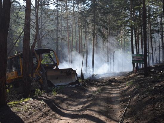 В Бурятии лес загорелся из-за костра