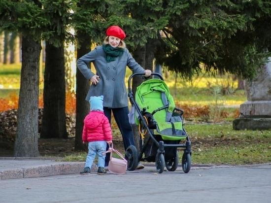 В Томской области опекунам выплатили пособия на детей от 3 до 7 лет на 3 млн рублей