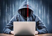 Омский хакер атаковал в сети развлекательные объекты и органы власти