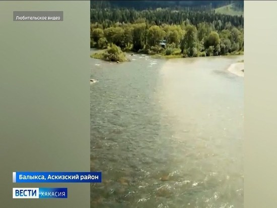 В реке Балыксу обнаружены опасные концентрации цинка