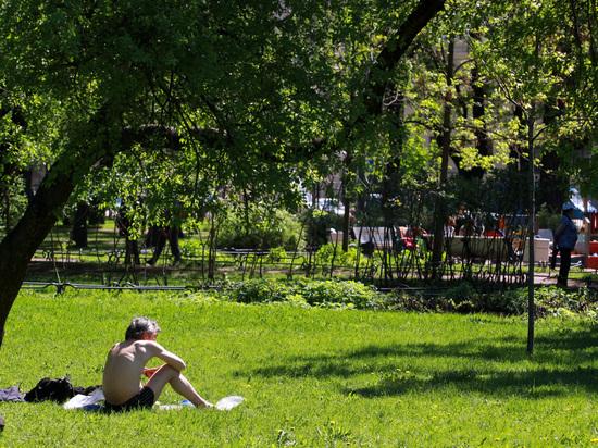Петербург обогнал Москву по доступности зеленых зон