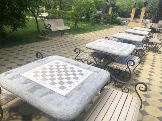 Летний проект «ШахмаПарк» запустят в Чите 12 июня