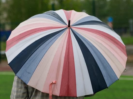Кратковременные дожди прогнозируются в Псковской области 11 июня