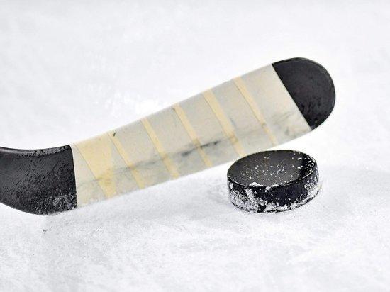 После ЧМ по хоккею вырос спрос на шайбы и клюшки в Нижнем Новгороде