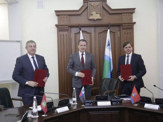 Белгородская область и соседние регионы будут вместе развивать научную сферу