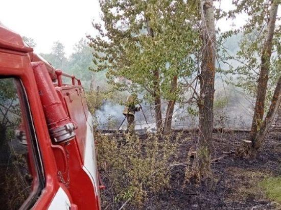 В Оренбургской области не утихают степные пожары