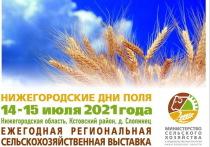 День поля пройдет в Нижегородской области