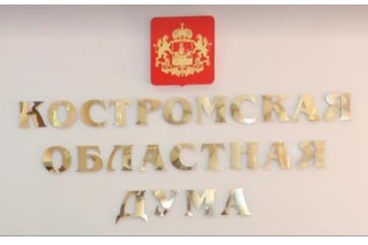 Депутаты Костромской областной Думы решили продлить льготы многодетным семьям