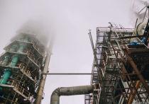 В соответствии с этим соглашением на средства частных инвесторов будут модернизированы заводы «РУСАЛ Новокузнецк» и ПАО «Кокс»