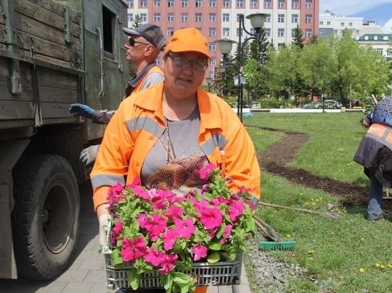 Больше 100 тысяч цветов высадят в Чите в ближайшие дни