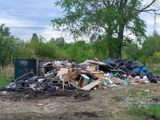 «Магнит» объяснил проблему вывоза мусора с омской улицы Комбинатской