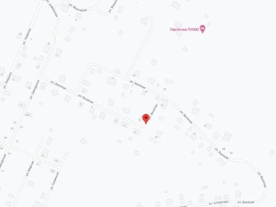 В Великих Луках в 150 метрах от дома нашли авиабомбу