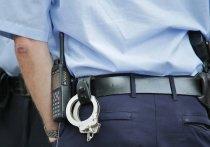 К условному наказанию приговорили жителя Плюсского района за кражу бензопилы