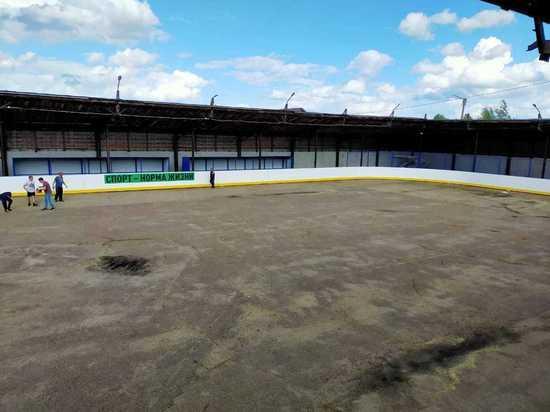 В районах Марий Эл появятся новые хоккейные коробки
