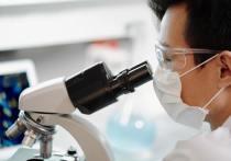 Искусственное создание коронавируса было приоритетом американских биологов