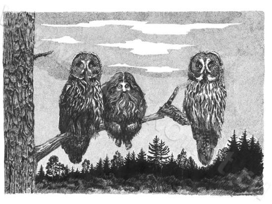 Выставка книжного иллюстратора открывается в Вышнем Волочке