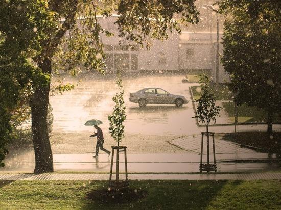 В ряде регионов России ожидается опасная погода: ливни и грозы