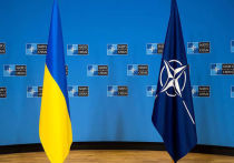 В Киеве заявляют о готовности вступить в военный блок НАТО для защиты от «российской агрессии»