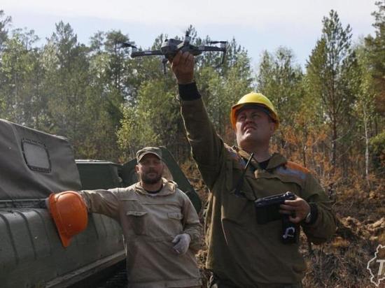 В праздники тюменские леса будут патрулировать в усиленном режиме