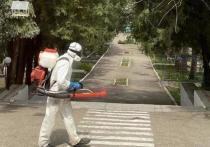 В Железноводске обработали от клещей и комаров рекордную площадь