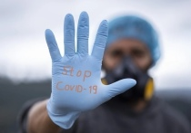 Очаг коронавируса обнаружили на великолукском заводе «Микрон»