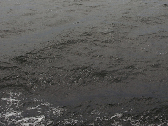 На Сахалине проводят проверку из-за разлива нефтепродуктов