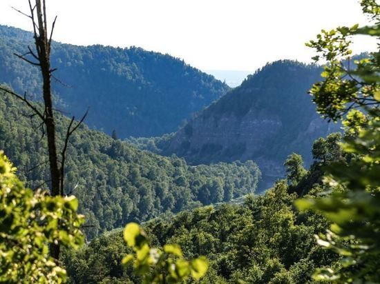 Турист упал с трехметровой скалы в Белорецком районе Башкирии