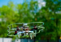 """Набор детей на следующий учебный год объявили центры цифрового образования """"IT-Куб"""" и технопарки """"Кванториум"""""""