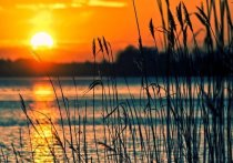 В мэрии Томска заявили, что открытие пляжа на Семейкином острове зависит от эпидобстановки