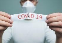 14 июня: в Германии 549 новых случаев заражения Covid-19, за сутки умерли 10 человек