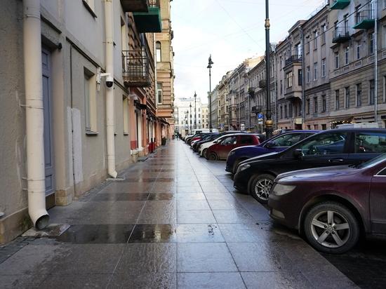 Полиция Петербурга «прогулялась» с польскими фанатами по Рубинштейна
