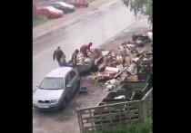 Жители Петрозаводска нагло выгружали мусор у контейнерной площадки