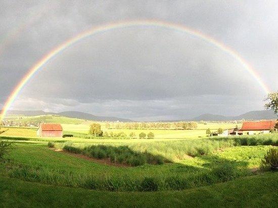 В Татарстане до конца недели сохранится жаркая погода с дождями и ветром