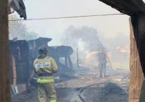 Из-за резкого увеличения пожаров в Челябинске глава города обратилась к жителям
