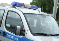 В Москве сотрудники правоохранительных органов задержали мужчину, который подозревается в изнасиловании женщин в парке «Лосиный Остров», сообщает РЕН ТВ