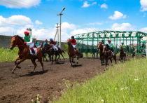 Житель Ингушетии выиграл автомобиль на конных скачках республики