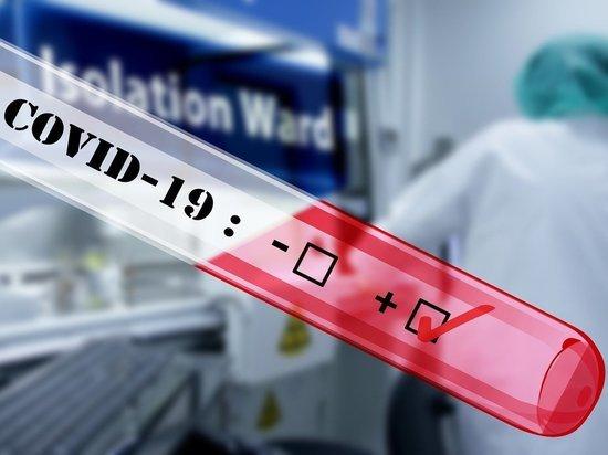 «Дважды переболела и не получила деньги»: медик из Салехарда жалуется на отсутствие «ковидных» выплат