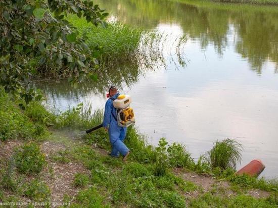 В Рязани продолжают обрабатывать водоемы от личинок комаров