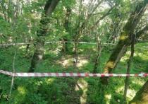 Грибник нашел военный снаряд в лесу Железноводска