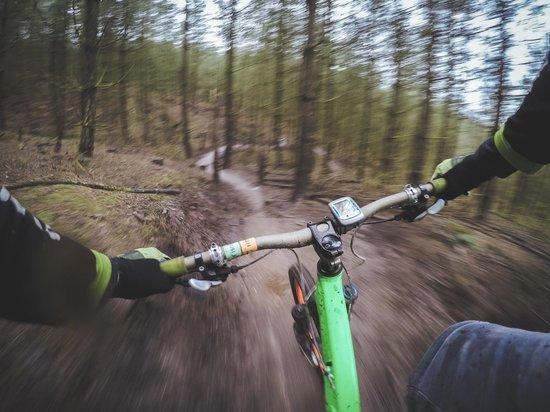 «Огромный фингал, губа разбита»: подросток-велосипедист наехал на двухлетнего малыша в парке Ноябрьска