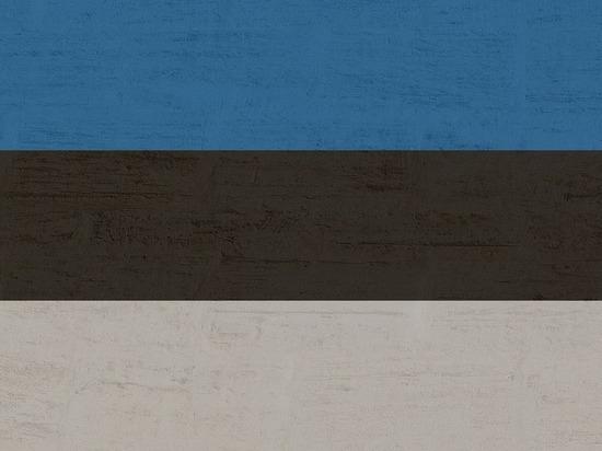 Эстония перестанет финансировать русскоязычные школы и сады с 2035 года