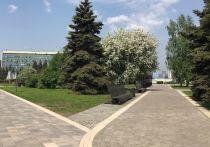 Глава Новокузнецка Кузнецов рассказал о ходе реконструкции площади перед администрацией