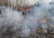 В Алтайском крае отменен особый противопожарный режим, о чем докладывает пресс-центр правительства региона.