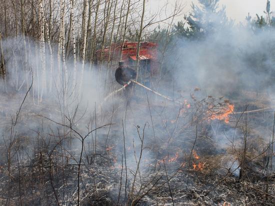 Особый противопожарный режим отменили в Алтайском крае