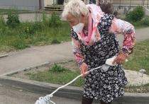 В мэрии Бийска отреагировали на действие пенсионерки, которая нанесла краской дорожную разметку на пешеходном переходе, пишет «Бийский рабочий».