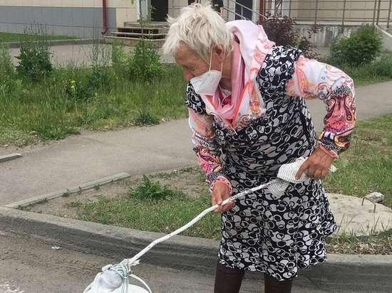 В Бийске сотрут пешеходную разметку на дороге, которую нанесла пенсионерка