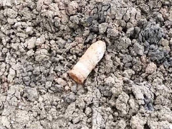 В Калужской области около озера обнаружили 15 мин