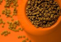 Калужская область увеличила экспорт кормов для животных в 1,6 раза