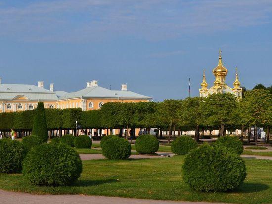 Коронавирус закрыл несколько музеев в Петергофе